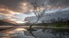 Merry Christmas..xx (Einir Wyn Leigh) Tags: landscape tree christmas wales lake sunrise colour nikon pleasure fun sky light
