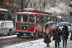 Snow Ride ☃☂❄ Vancouver, BC (Michael Thornquist) Tags: snowcouver gastown trolleybus trolley bus waterstreet umbrella snow blizzard flurry cobblestone road vancouverphotos vancouver britishcolumbia dailyhivevan vancitybuzz vancouverisawesome veryvancouver 604now photos604 explorecanada ilovebc vancouverbc vancouvercanada vancity pacificnorthwest pnw metrovancouver gvrd canada nieve neve schneien neige 雪