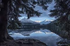 Auke Lake Towers TreeFrmd sm323 (Gillfoto) Tags: