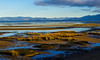 Golden bay (Caroline Balme Photography) Tags: newzealand travelaroundtheworld roadtrip whv