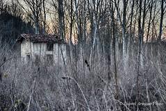 Era un luogo di vita (Gianni Armano) Tags: rustico era un luogo di vita foto gianni armano photo flickr