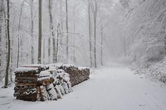 Episode hivernal (Excalibur67) Tags: nikon d750 sigma globalvision 24105f4dgoshsma paysage landscape forest foréts arbres trees brume brouillard mist nature neige snow vosgesdunord