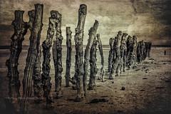 ST-MALO LA PLAGE (pierre.arnoldi) Tags: france bretagne stmalo plage photographequébécois photodevoyage pierrearnoldi phototexturée photooriginale photonb on1photoraw2018