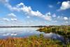 Groene Jonker (MartinGJ56) Tags: landscape landschap natuur plant reflectiereflection riet waterlandschap waterplas waterscape wolken zevenhoven zuidholland nederland ned