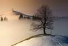 Merry Christmas dear friends (AndiP66) Tags: ahorn maple baum tree ahornalp bestenegg lurthern luzern lucerne winter schnee snow nebel fog dezember december 2017 schweiz switzerland sony alpha sonyalpha 99markii 99ii 99m2 a99ii ilca99m2 slta99ii sony70400mm f456 sony70400mmf456gssmii sal70400g2 amount andreaspeters
