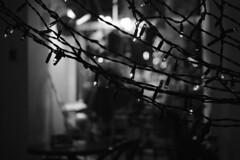 зенит-с (Artyom Barinov) Tags: 35mm 35мм 35mmstreetphoto everybodystreet 35mmfilm genrephoto lensculture genre zenit streetphoto streetlife жанр fragment film filmcommunity filmphoto filmisalive filmisnotdead lifeisstreet stilllife ourstreets kodak sovietcameras sovietlens lomo analog analogphoto light photo shadow night newyear пленка плёнка зенит burnmgazine