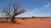 red center (tinfrey) Tags: australia downunder mountconner redcenter redsand sand