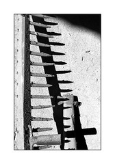 Nessun fiore nella traccia del rastrello ... ;/) (schyter) Tags: kiev20 arsenal slr sovietcamera mc helios81h 253 soviet lens lightmeter onboard analogica analogic film pellicola bw bn bianconero blackwithe 135 35mm rollei rpx100 adox adonal 125 tank ap compact homemade development scanned epson v600 basiasco lodigiano lodi macro legno