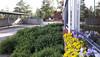 Lähdeaukio, Lähderanta, Espoo (YouHoney#) Tags: koti asunto vehreä oma piha järvi ranta luonto palvelut lähellä