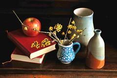La mela e il calicanto. (Melisenda2010) Tags: naturamorta stilllife calicanto inverno coth coth5