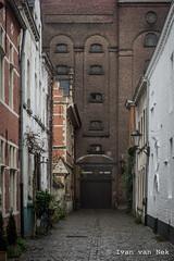 Hoviusstraat, Mechelen (Ivan van Nek) Tags: brouwerijhetanker hoviusstraat mechelen provincieantwerpen belgië labelgique nikond7200 d7200 nikon bier beer bière belgium