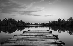 Pier in Campo (elisabartolini) Tags: pier woodenpier woodendock lake water landscape trees mysterious calm reflections naturalbeauty nature canon canonphotography canon700d canonphotos canonlovers clouds exploring explorer tuscany italy pisa blackandwhite bnw bw beautiful blackwhitephotography beautifulplaces beautifuldestinations monochrome photography passion outdoors travel