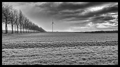 The Runner (Alfred Grupstra) Tags: nature blackandwhite field landscape ruralscene farm turbine sky grass outdoors windturbine environment nopeople nonurbanscene cloudsky wind landscaped meadow industry agriculture 29 runner