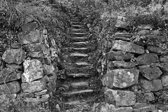 Mäushöhle (dese) Tags: deidesheimermäushöhle deidesheim mäushöhle november21 2017 november haust autumn germany tyskland trapp pfalz treppe treppen