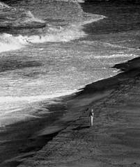 A Detached Feeling (coollessons2004) Tags: kauai hawaii beach sepia ocean pacificocean woman