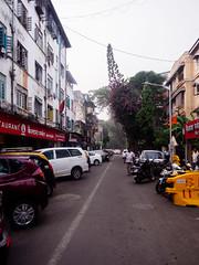 1st Pasta Lane (deepaqua) Tags: auto tree colaba india mumbai storefront apartmentbuilding apartment restaurant street