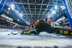 "Kansas City Mavericks vs. Colorado Eagles, December 17, 2017, Silverstein Eye Centers Arena, Independence, Missouri.  Photo: © John Howe / Howe Creative Photography, all rights reserved 2017. • <a style=""font-size:0.8em;"" href=""http://www.flickr.com/photos/134016632@N02/24278229687/"" target=""_blank"">View on Flickr</a>"