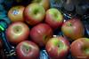 An Apple a day (JSB PHOTOGRAPHS) Tags: jsb18810000 apple apples nikon d600 28300mm
