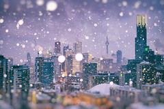 Toronto's Magic SnowGlobe (Katrin Ray) Tags: torontosmagicsnowglobe bluehourintorontosnowglobe blue mist snow snowfall snowflakes flash golden lights bluehour urban cntower downtown toronto ontario canada katrinray dreamscapesoftoronto night canon eos rebel t6i 750d