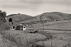 Home on the Range (skipmoore) Tags: sonomacounty dstreetextension rural barn windmill cattle cows bw