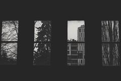 Frames (bluishgreen12) Tags: museum windows views sarajevo bosniaandherzegovina bnw canon35mm canonfl vintagelens