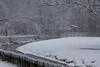 Snowscape (Jaap Coorens) Tags: sneeuw wit weather white landscape winter koud snow