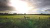 Approaching storm (- A N D R E W -) Tags: raindrops rain lluvia storm tormenta fence valla alpha mirrorless sony ilce6000 e 19mm f28 emount arboles cielo