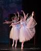The Gift 2017 - Royal Theatre (balletvictoria#1) Tags: andrea bv balletvictoria sony thegift2017 theroyal ballet rehearsal
