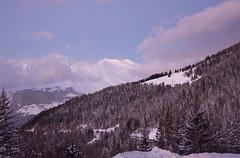 Purple Mountain (2.6 m views ! https://society6.com) Tags: 2017 alpes alps arcs1800 décembre2017 montblanc noel2017 sapin blue cloud fire massif photo pourpre purple tree vacances violet