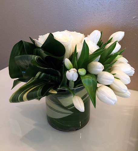"Aspidistra_Tulips_White • <a style=""font-size:0.8em;"" href=""http://www.flickr.com/photos/81396050@N06/27359251999/"" target=""_blank"">View on Flickr</a>"