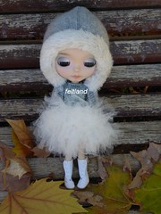 Winter Fairy ...