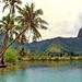 Bora Bora along the island road