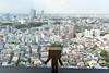 A Glimpse of Tokyo (Arielle.Nadel) Tags: danbo danboard revoltech tokyo yotsuba japan