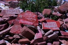 Prayer Rocks (YY) Tags: 納木措 湖 西藏 那曲 namtso lake saltwater tibet nagqu lakenam mantras
