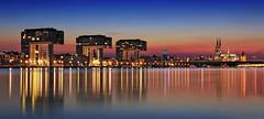 Köln Skyline Sunset (FH | Photography) Tags: köln skyline sunset nrw nordrheinwestfalen kranhäuser dom rhein abends sonnenuntergang panorama deutschland europa city gebäude architektur wahrzeichen sehenswürdigkeit spiegelung