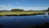 Swan Lake Pastoral (E Dras) Tags: grandtetonnationalpark landscape