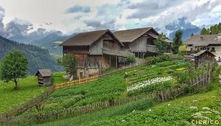 La Val, La Valle, Wengen : I caratteristici orti (the characteristic vegetable gardens)