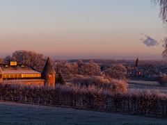 Cold mornimg / Kalter Morgen