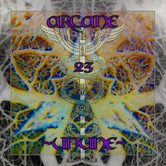 Arcane 23 by ~UNUNE~ (FreAK Over Collection) Tags: netlabel surreal postindustrial apocalyptic ritual dark ambiant magick dronemusic ambient experimental soundscapes minimal industrial music noise freedownload cosmic meditative spirituality dreamwave heavenly concrete meditation serial soundtrack occult abstract symbolism surrealism copyleft outsiderart weird 23 arcane tarot oracle mystical art artwork sleeve record strange gift 2017 2018 photography kaleidoscope diy lens snow cryptic chaosmagick creative commons