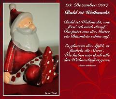 23. Dezember 2017 (Mr.Vamp) Tags: advent adventskalender adventszeit mrvampvamp mrvamp vamp