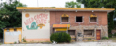 Wild Cactus Cafe (UrbanphotoZ) Tags: wildcactuscafe mexicanrestaurant mexicaan restaurant abandoned boardedup brick stone awnings cactus sombrero mural paintedover overgrown parkinglot trees dilapidated yonkers westchester newyork