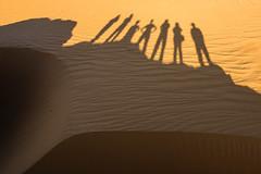 Arena y sombras. (Victoria.....a secas.) Tags: sáhara chad desierto desert arena sand sombras shadows