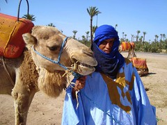 3 days tours from Marrakech to Fez (mohamedouassouibrahim) Tags: morocco desert tours