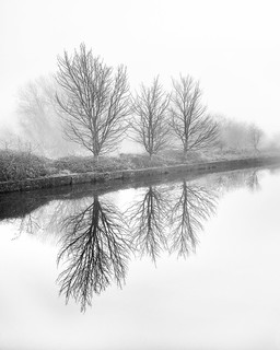 Foggy Mirror Image