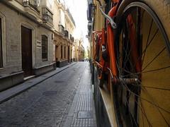 Orange bike shop, Cadiz, Spain (Diepflingerbahn) Tags: orange bike bicycle shop cadiz spain lasbicisnaranjas theorangebicycleshop calleantoniolopez panasoniclumixdmctz80 andalucia