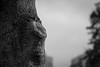 The Ent (Roy.G.Levy) Tags: tolkien tree black white bw zeiss 85mm d7100 face nature light shadow nikon fantasy blackandwhite lordofthering