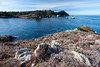 View from Granite Point (RPA-Home) Tags: pointlobos seacape