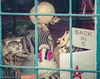 Back in.......5 (Maureen Medina) Tags: maureenmedina artizenimages tucson az arizona elbarrio downtown window sign skeleton muneca doll weird