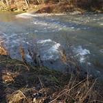 wildes Wasser 013 thumbnail