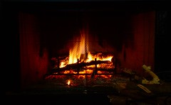 (g.zeidman) Tags: fire fireplace keepwarm
